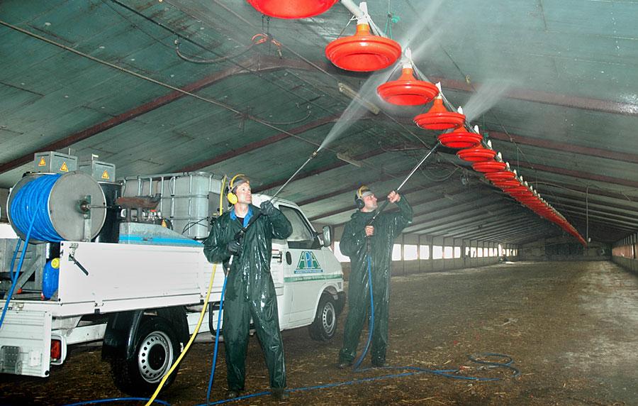 Lavage batiment avicole